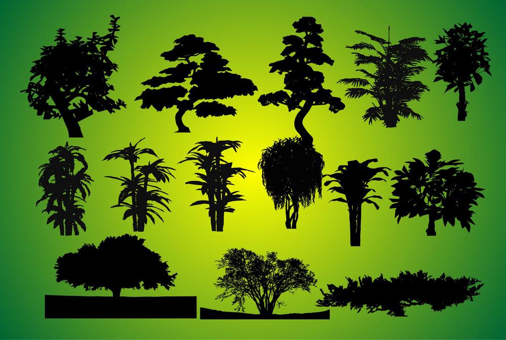 14 Plants Silhouettes