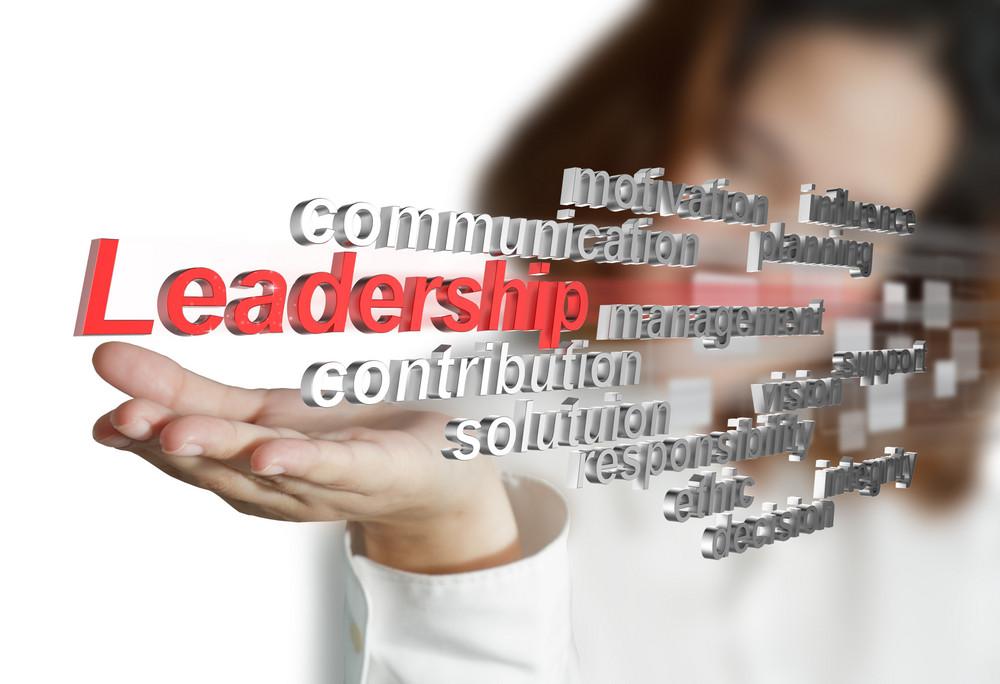 3d Leadership Skill As Concept