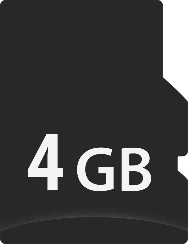 4 Gb Storage Card