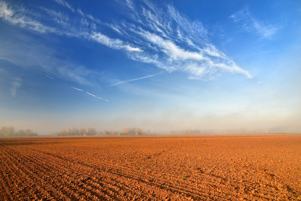 Orange Soil Field Against Blue Sky