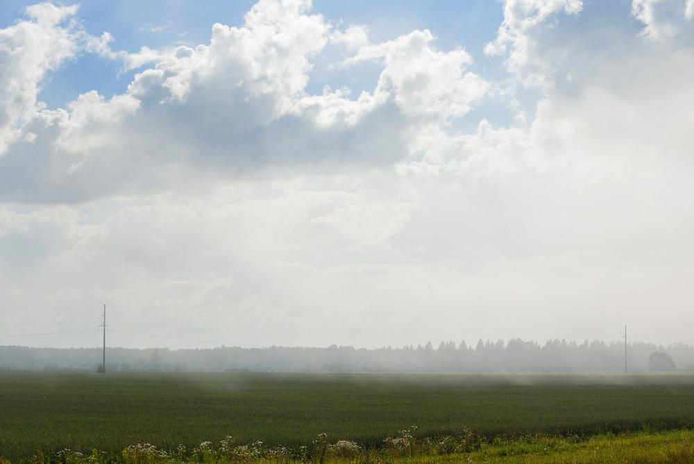 Fields In The Fog In Estonia