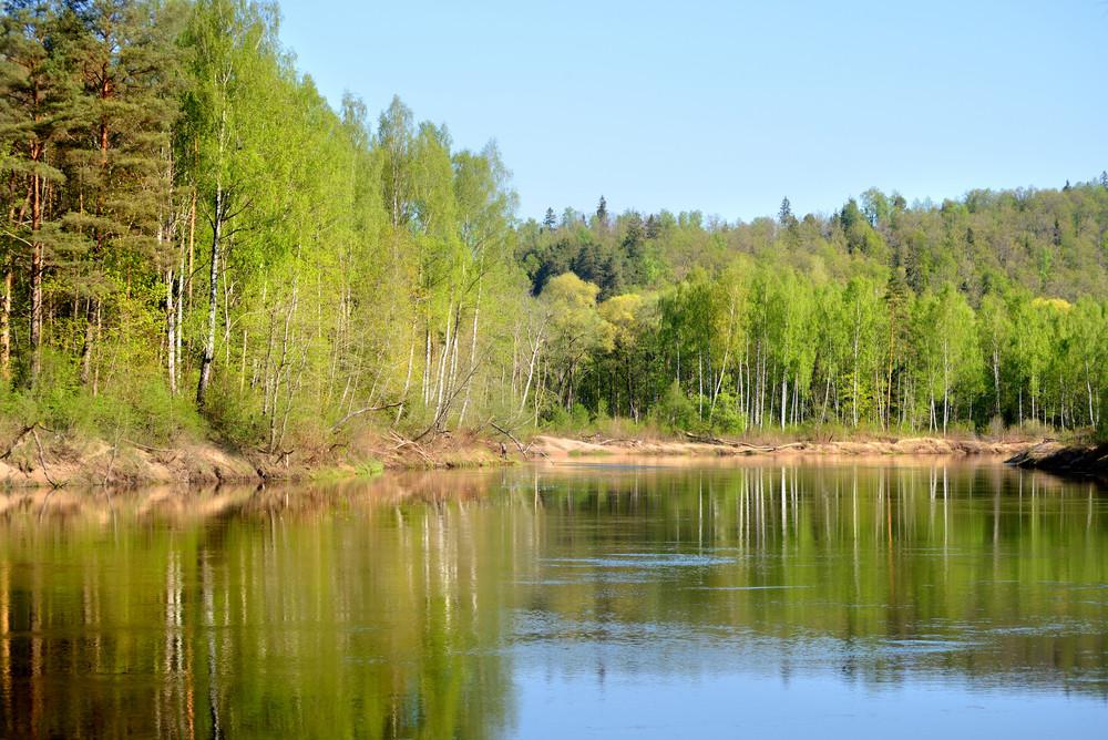 Gauja River In Spring Morning In Sigulda