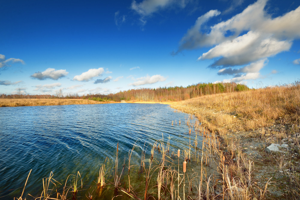 Autumn Lake Landscape Against Blue Sky