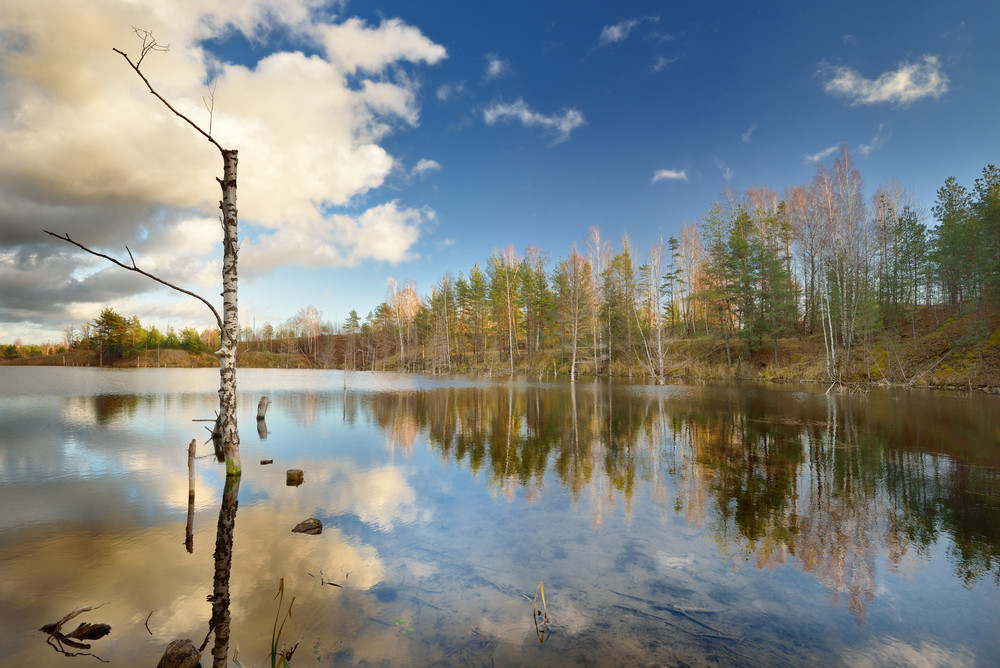 Autumn Lake Landscape Against Blue Sky