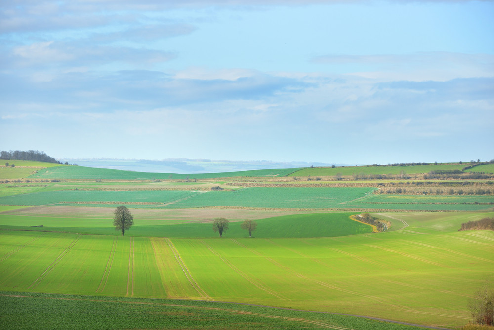 Fields On The Hills Of Picardie