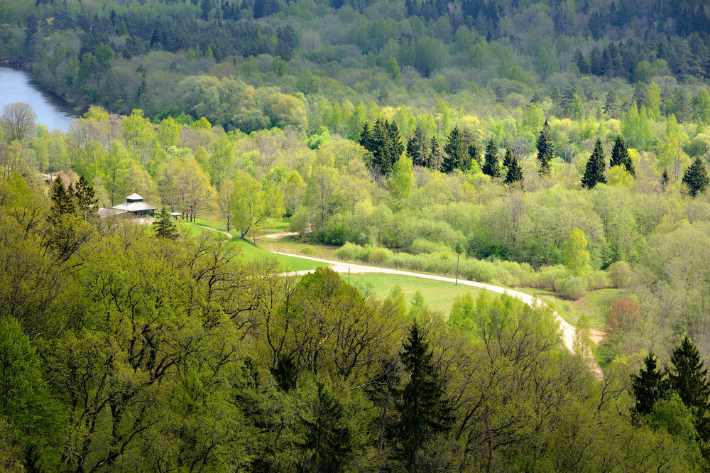 Areal View On Gauja River Valley In Spring In Sigulda