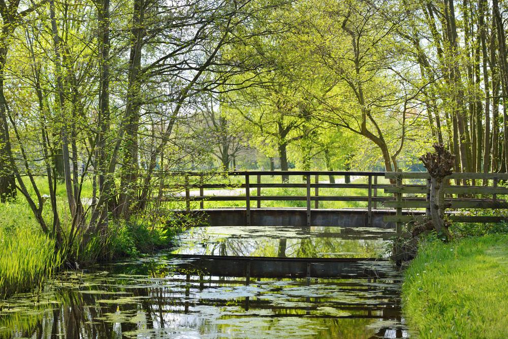 Small Bridge In Stochemhoeve Park In Leiden