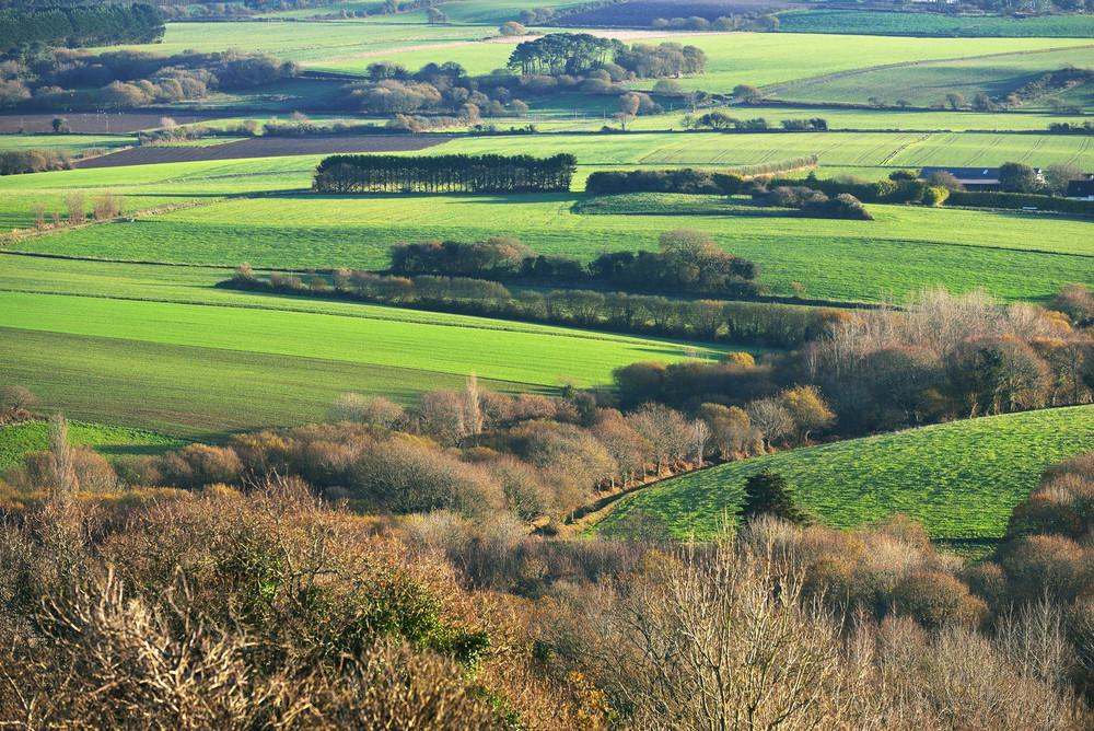 Fields On The Hills In Bretagne