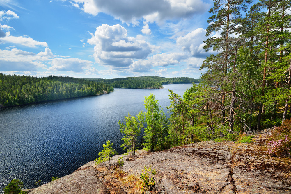 Landscape Of Saimaa Lake From Above