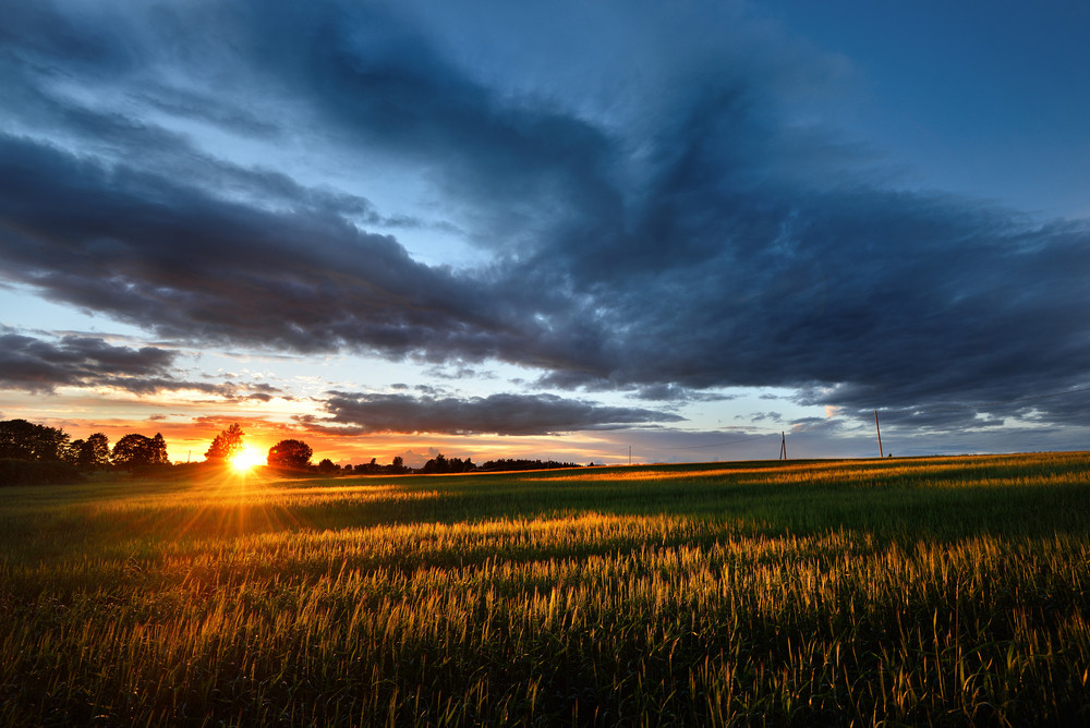 A Sunset Over The Field