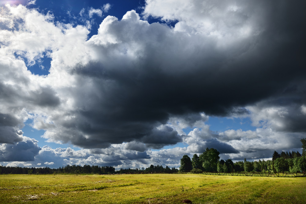 Green Field Against Rainy Clouds
