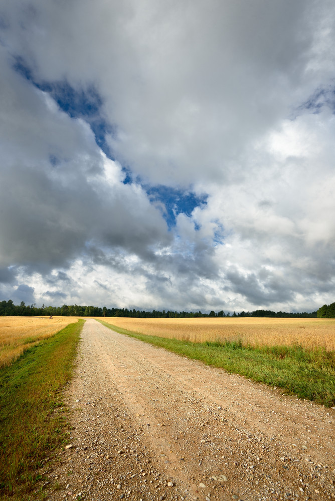 Road And Cereal Field Against Dark Stormy Clouds