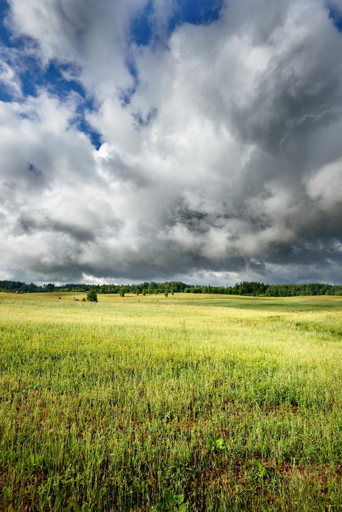 Green Field Against Dark Stormy Clouds