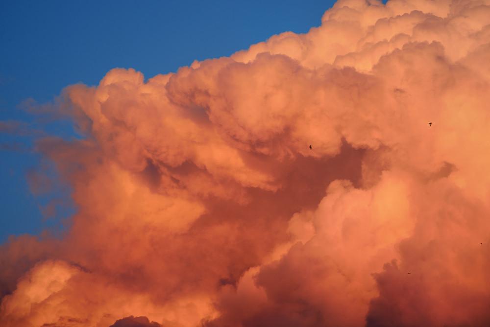Sunset Cloudscape. Red Ornamental Clouds