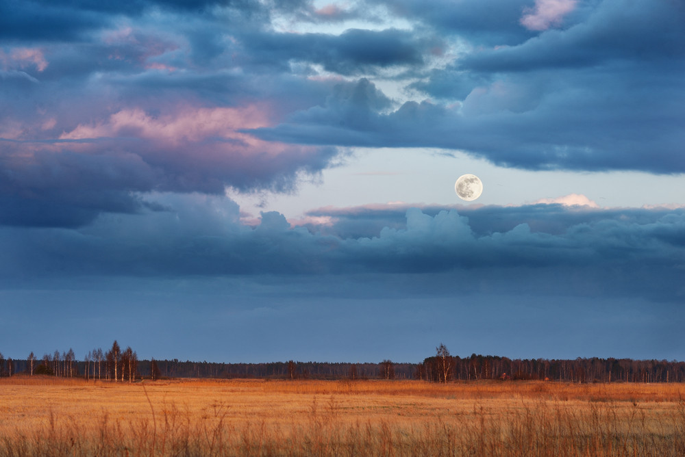The Moon Over The Field