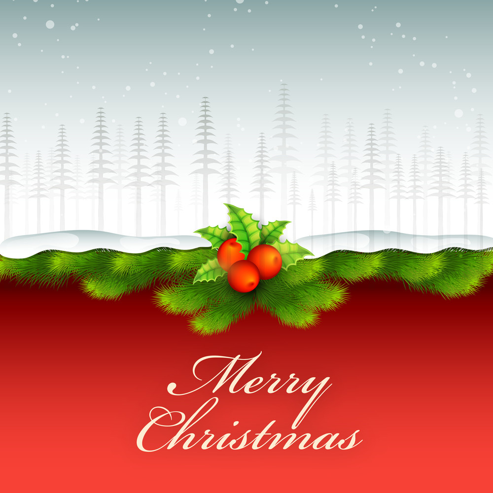 Elegant glossy greeting card with fir tree branches and mistletoe for Merry Christmas celebration.