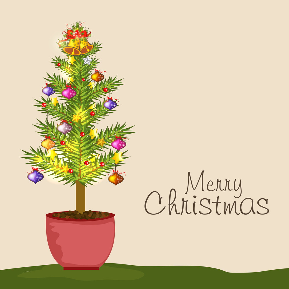 Merry Christmas celebration concept with decorative fir plant on beige background