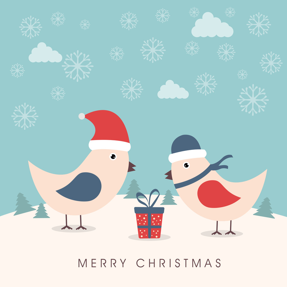 Cute love bird in Santa cap and winter cap with gift box on winter background for Merry Christmas celebration.