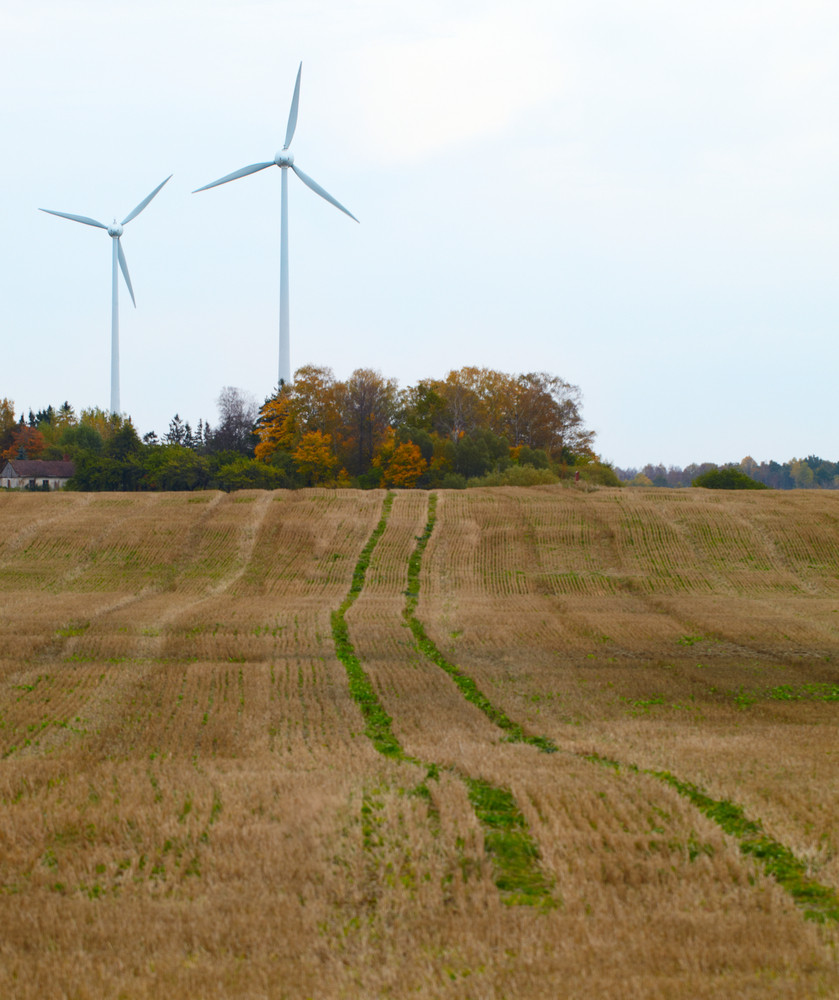 Two wind turbines in the field