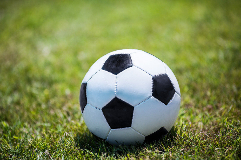 Traditional soccer ball on the lawn Royalty-Free Stock Image ... 283b5336014bb
