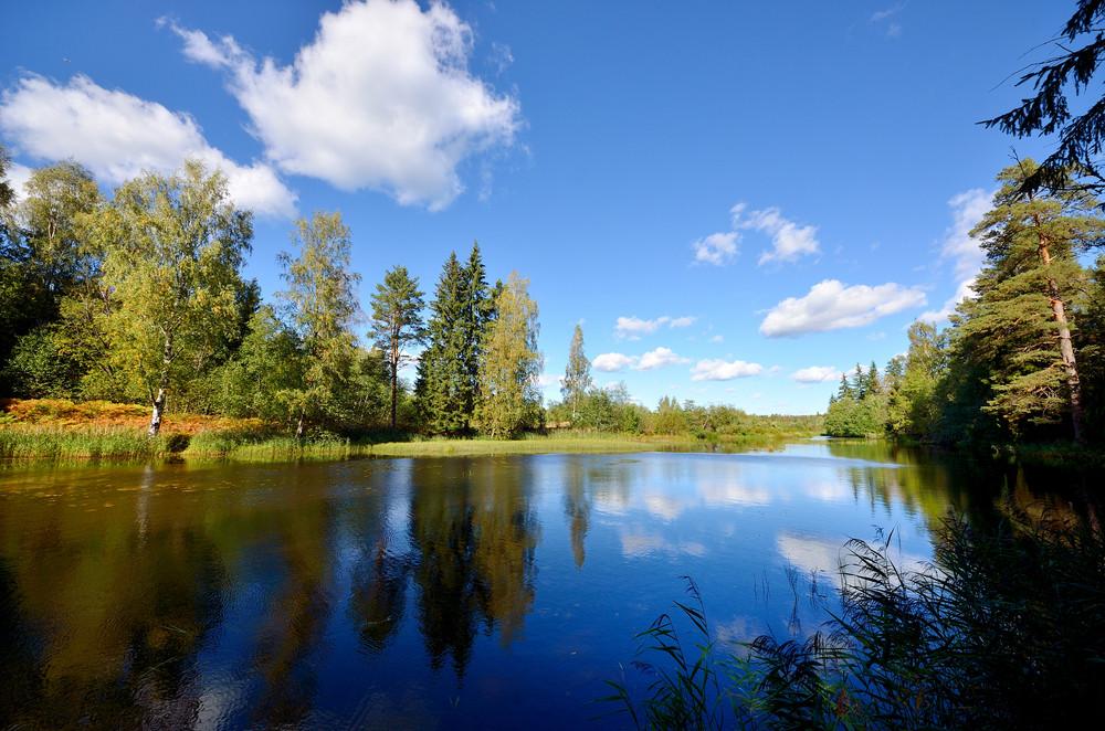 Fluss und Wald-Szene im Herbst