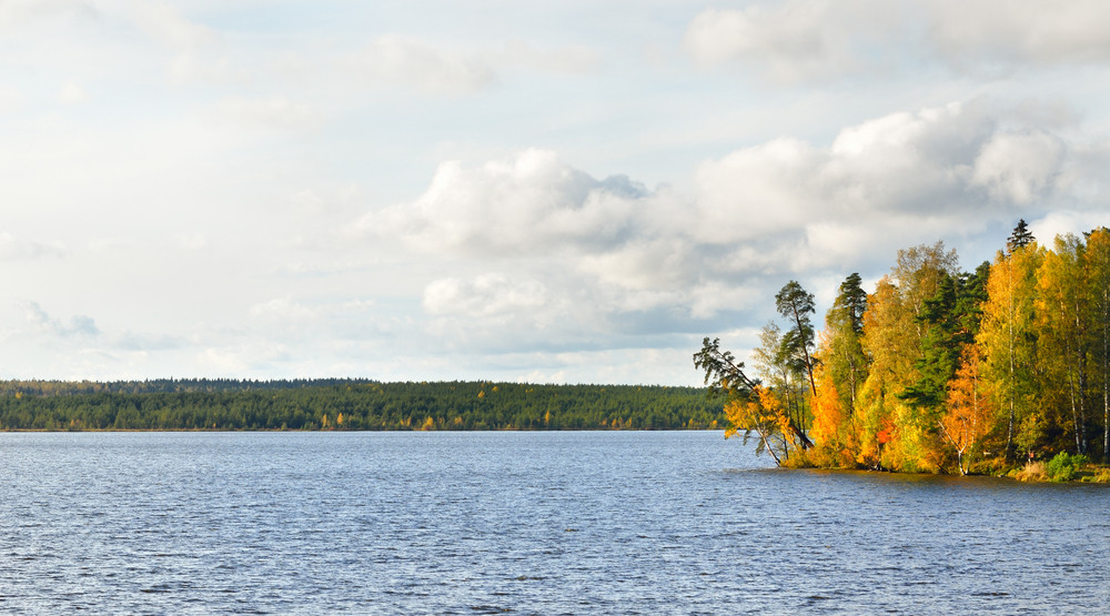 Lake Landscape During Fall Season