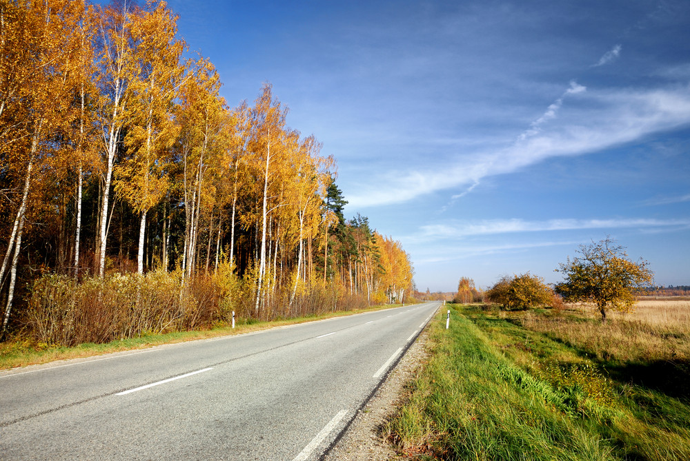 Country Road In Fall Season. Latvia