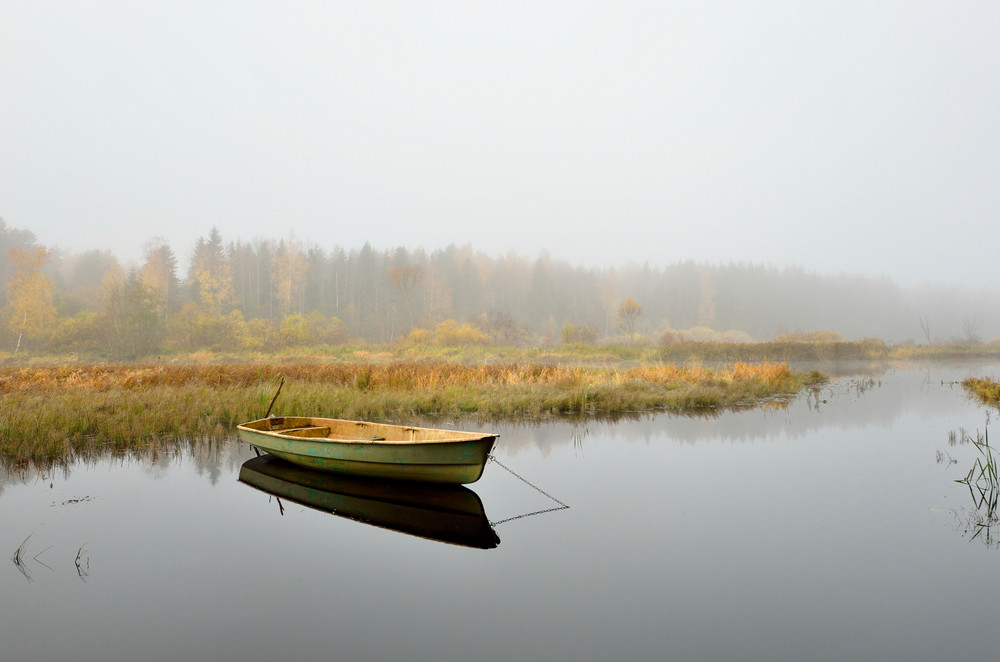 Stock photo of a rowboat in marsh on a misty day