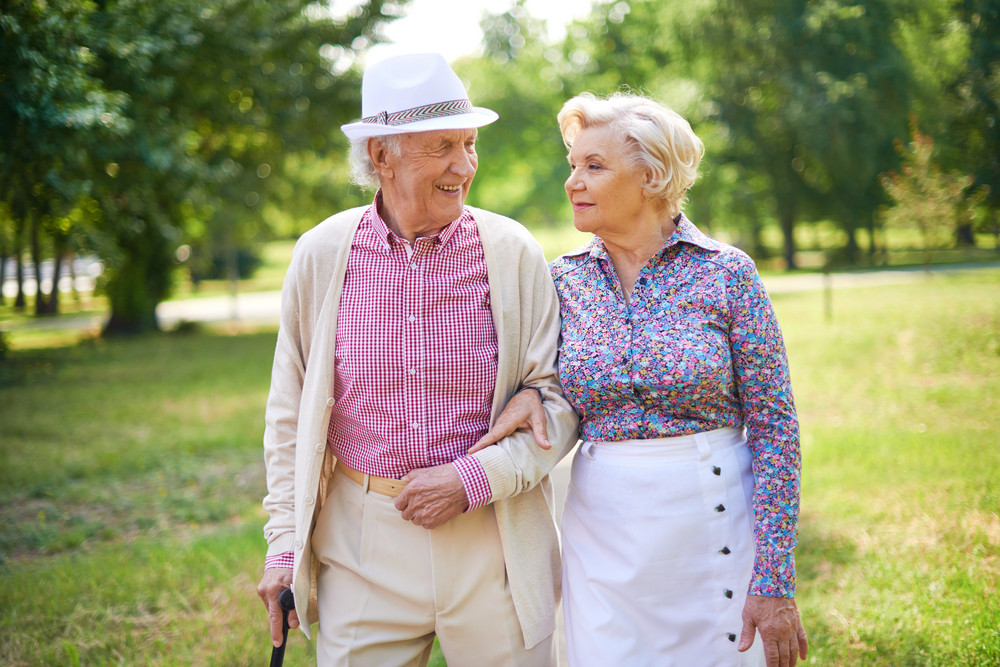 Happy Seniors Talking While Taking A Walk In The Park