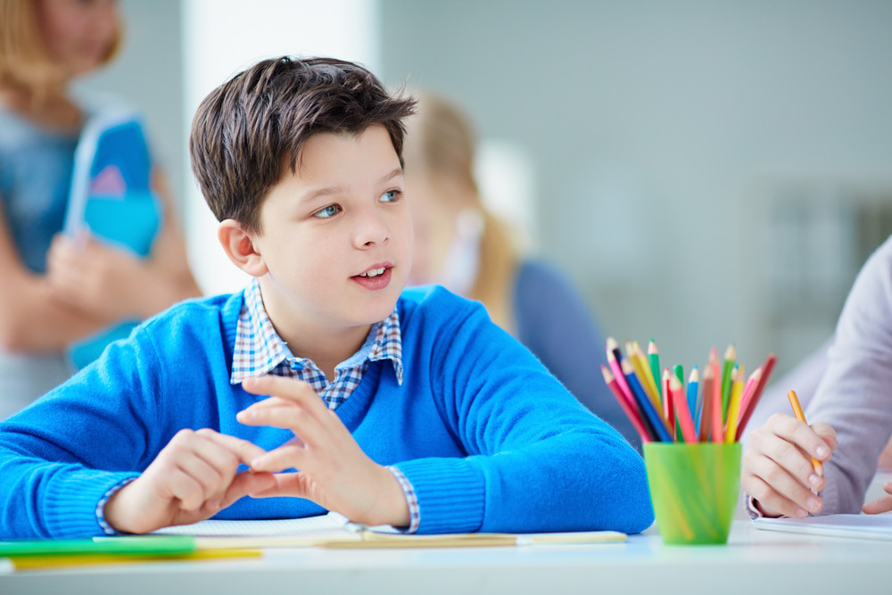 Portrait Of Cute Schoolboy Sitting At Lesson On Background Of His Classmates