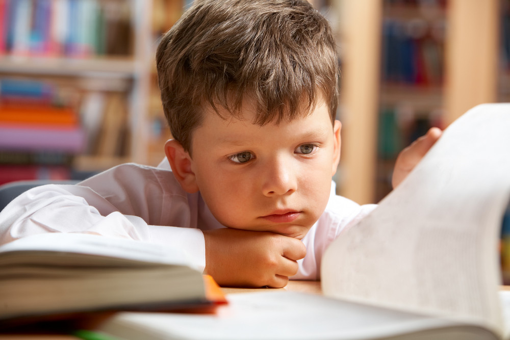 Close-up Of Cute Boy Preparing For Lesson In Library