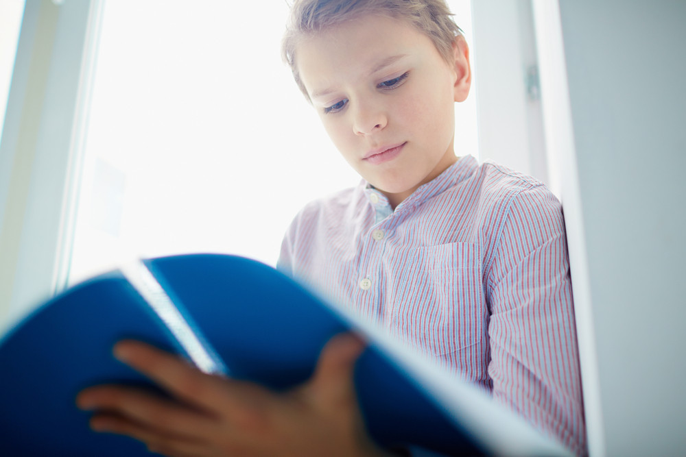 Portrait Of Handsome Schoolboy Reading Notes In Exercise Book