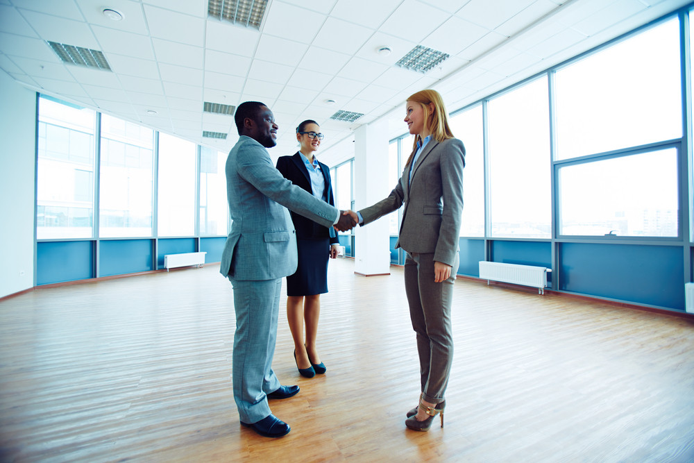 Successful Business Partners Handshaking In Office