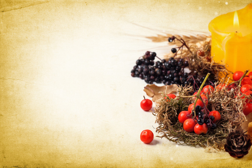 秋卡與漿果