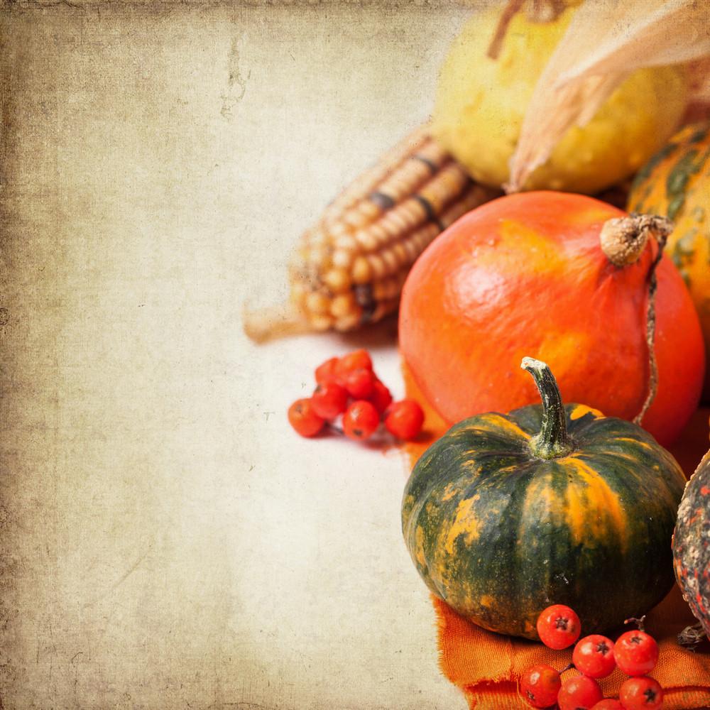 Autumn Mini Pumpkins