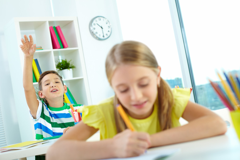 Portrait Of Clever Schoolkid Raising Hand At Lesson With His Classmate In Front