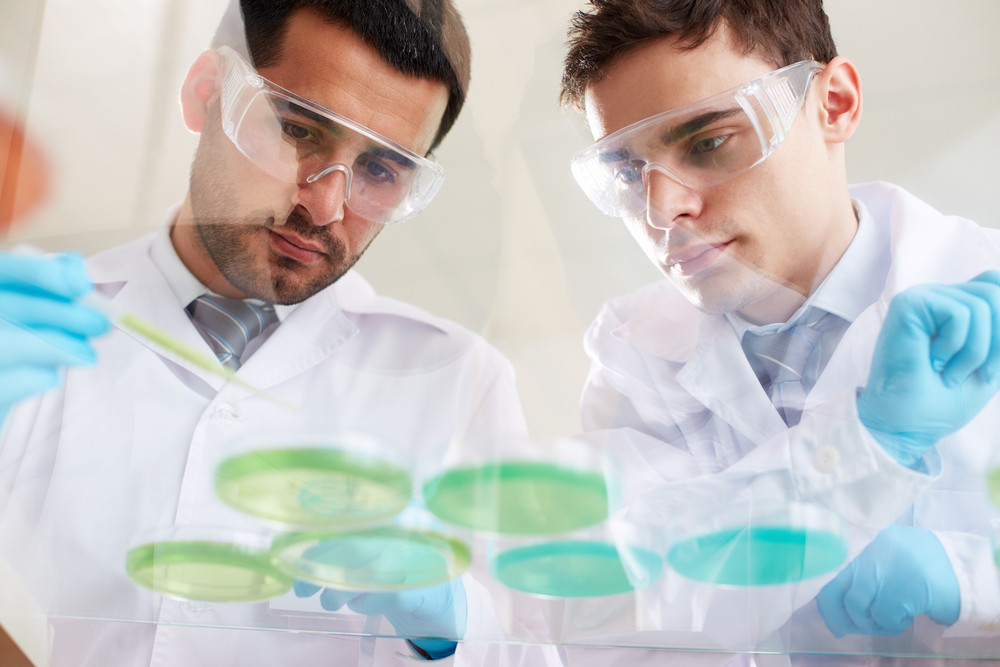 Two Clinicians Working With Liquids In Laboratory