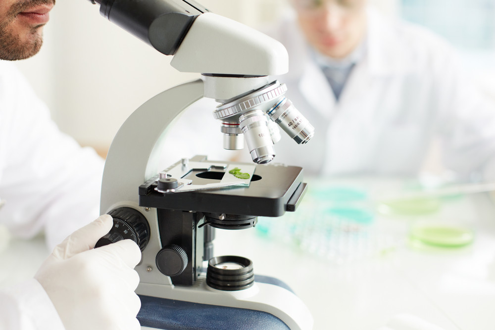 Male Clinician Studying Bio Sample In Microscope