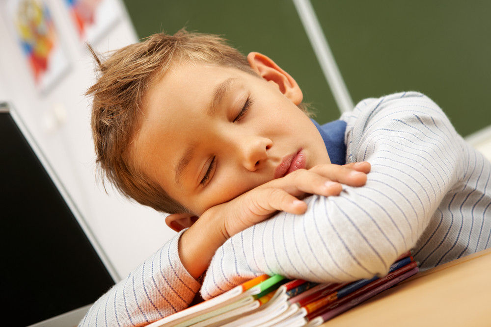 Portrait Of Cute Lad Sleeping With His Head On Copybooks In Classroom