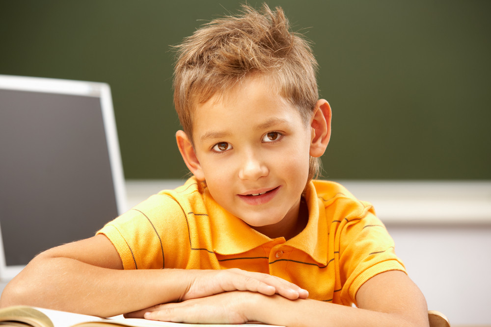 Portrait Of Smart Lad At His Place Looking At Camera During Reading Lesson