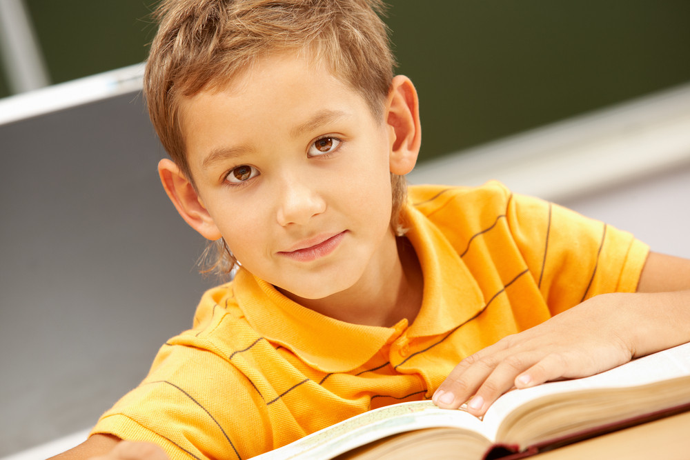 Portrait Of Smart Lad Looking At Camera During Reading Lesson