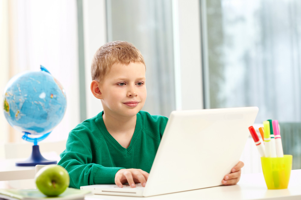 Portrait Of Smart Schoolboy Typing On Laptop At Lesson