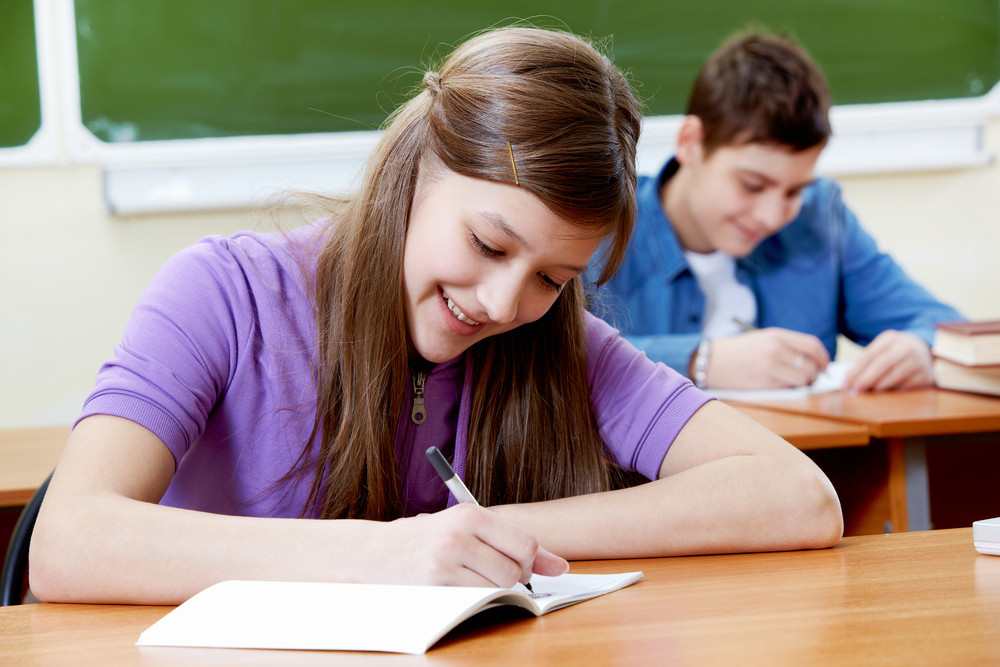 Portrait Of Smart Girl At Workplace Writing With Her Classmate On Background