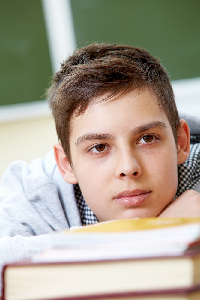 Portrait Of Smart Lad Listening To Explanation At Lesson