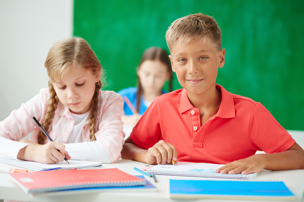 Cute Schoolboy Looking At Camera At Lesson Of Drawing With His Classmate Near By