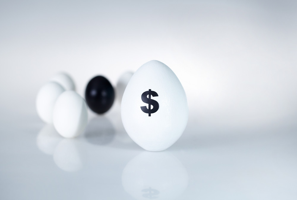 Image Of Big White Egg With Dollar Sign On Background Of Small Eggs