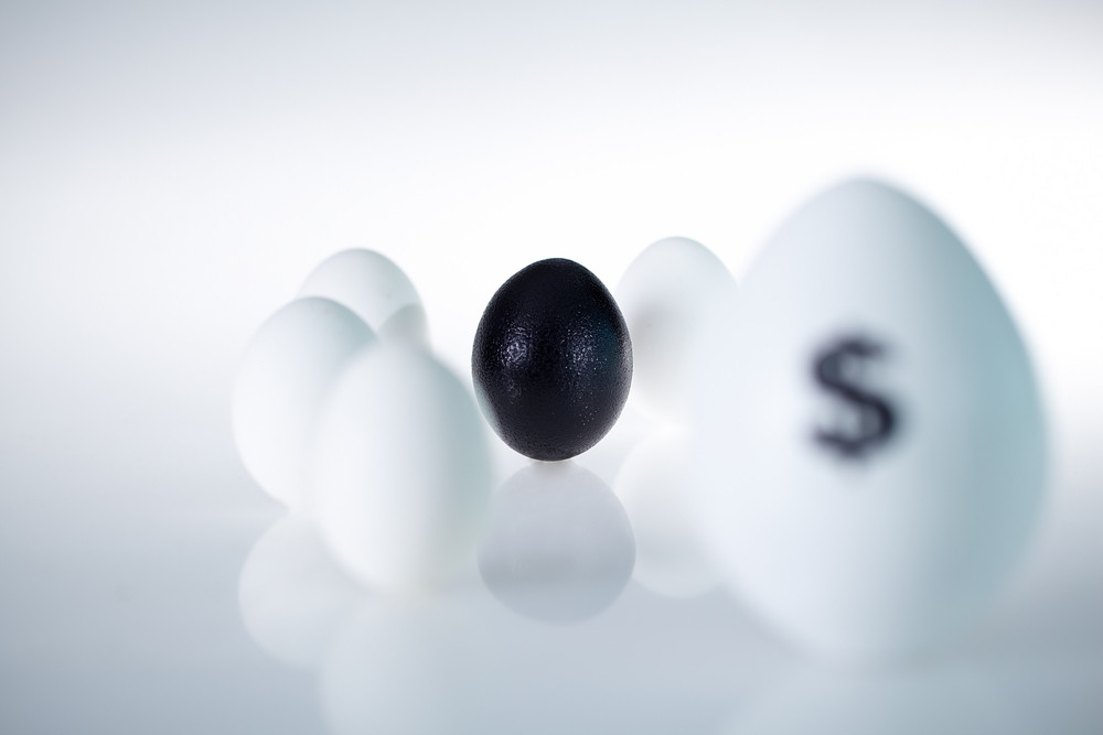 Image Of Black Egg Among Several Other Eggs