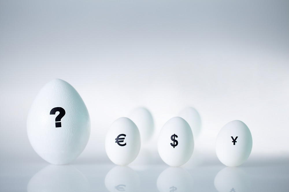 Close-up Of Big Egg With Question Mark On It And Several Small Eggs With Currency Signs