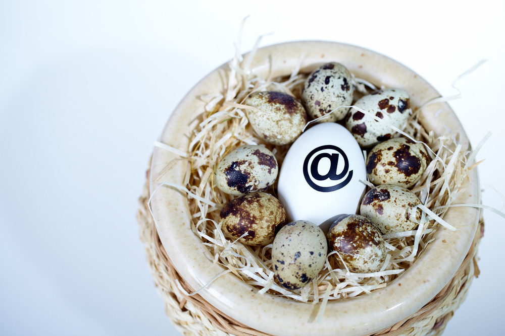Image Of White Egg With @ Sign Surrounded By Quail Eggs In Nest