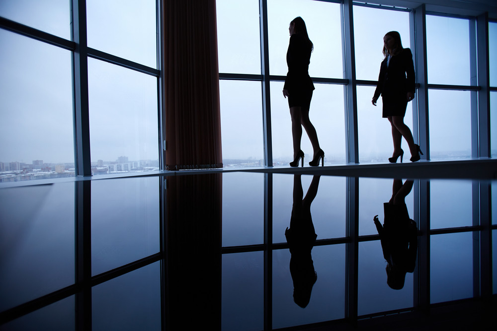 Silhouettes Of Two Businesswomen Standing Against Window In Office